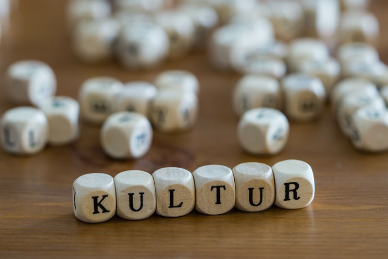 kultur-organisation-text