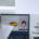 Online-Meetings-Effektiv-Effizient-Gestalten-Titelbild